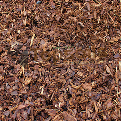 Coarse bark