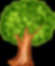 tree bark.png
