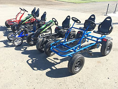 Thomas Family Farm Pro Karts