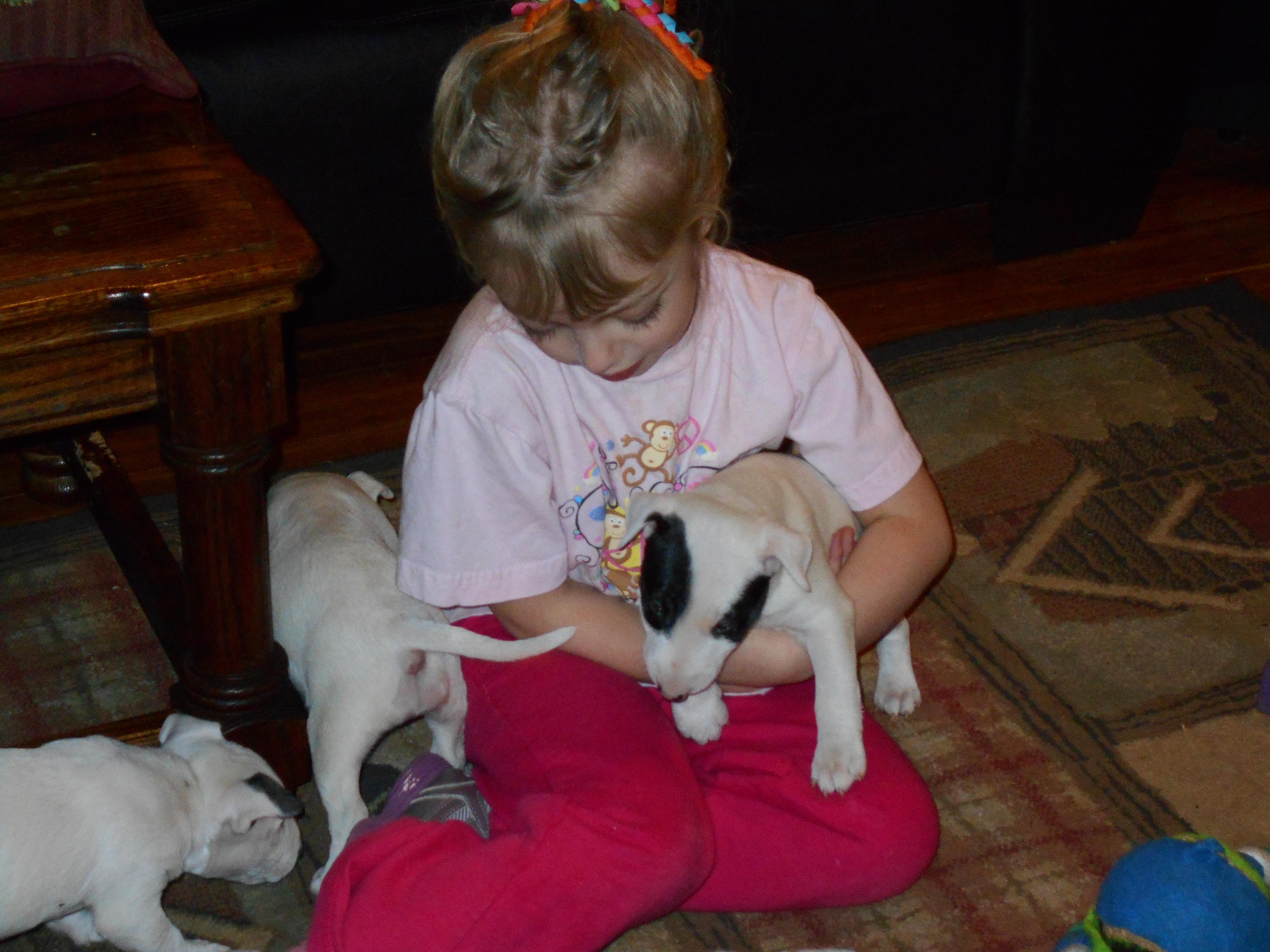 Jules & Puppies.JPG