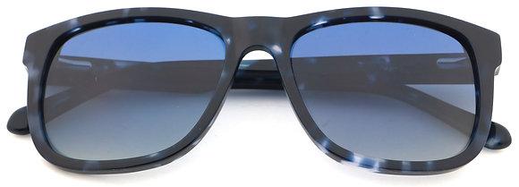 Polarised  BOLONIA Sunglasses