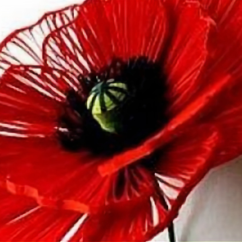 Poppy Ornament Workshop SOLD OUT