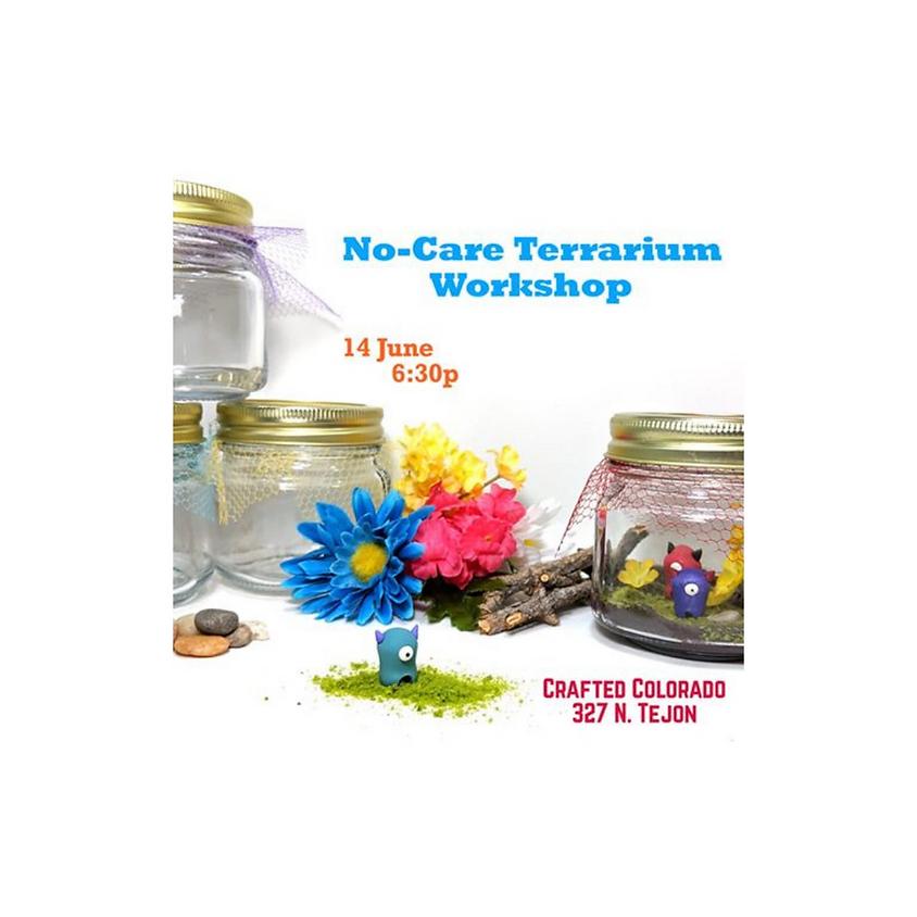 No-Care Terrarium Habitat for Timid Monsters!