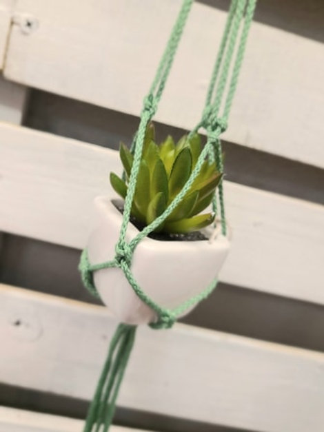 REAR VIEW MIRROR SUCCULENT hanging planter - Light Green