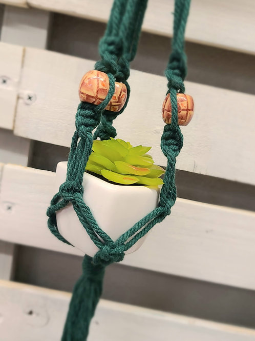 REAR VIEW MIRROR SUCCULENT hanging planter -Dk Green