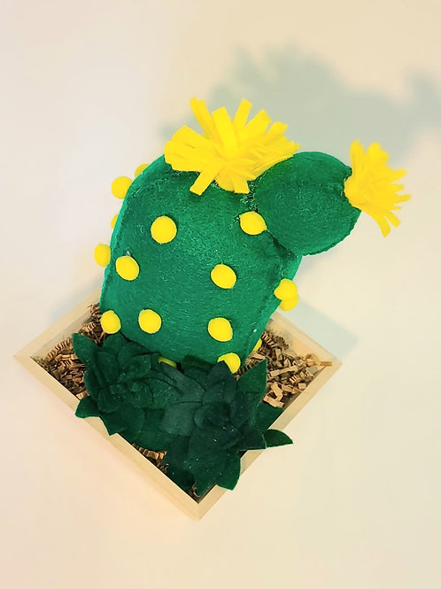 FELT HOUSE PLANT - Fat Cactus Box