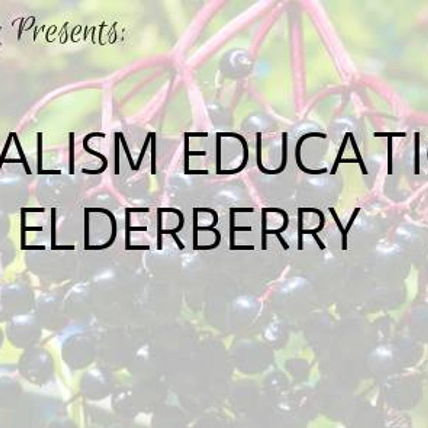 Herbalism Education: Elderberry