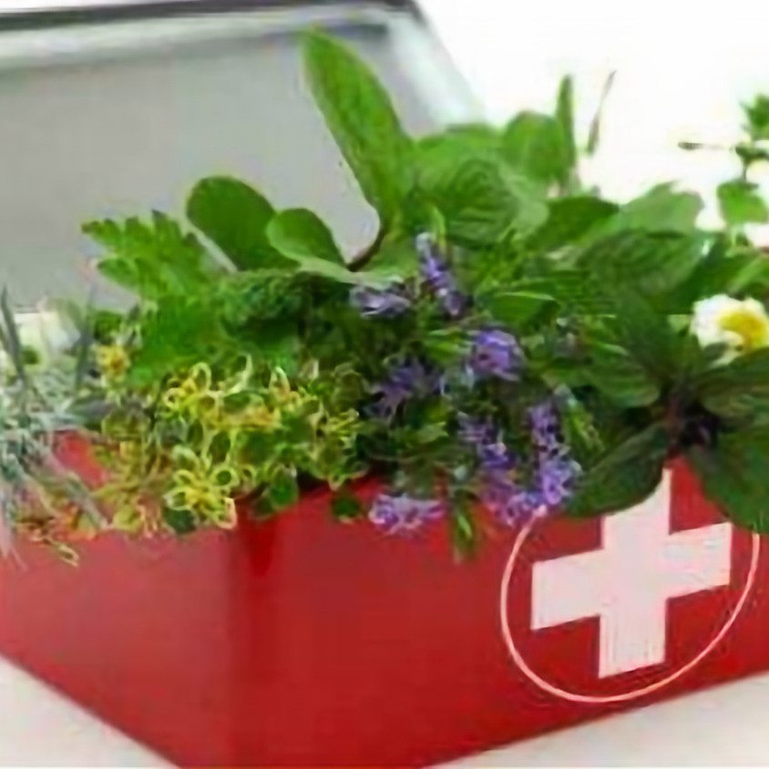 SOLD OUT - Building Your Own Herbal Medicine Cabinet