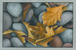 """Rocks and Leaves"""