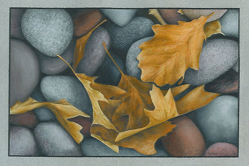 """Rocks and Leaves"" 6 x 9 Giclee Print"