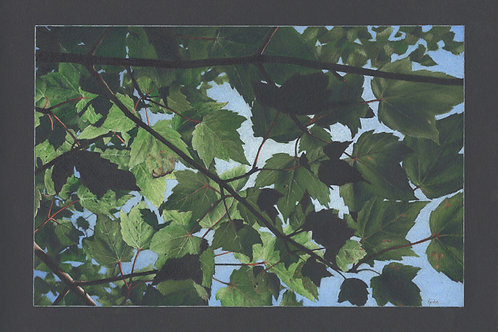 """Breaking Through"" 11 x 14 Giclee Print"