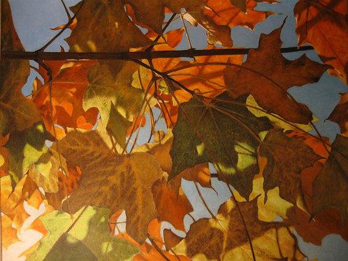 """Fall Finale"" 11 x 14 Giclee Print"