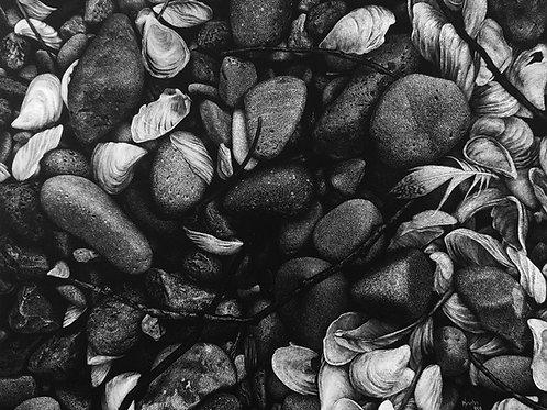 """Diverse Beauty"" 8 x 10 Giclee Print"