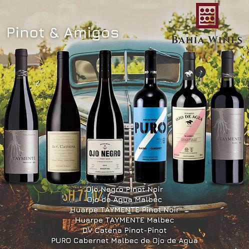 Box Pinot & Amigos