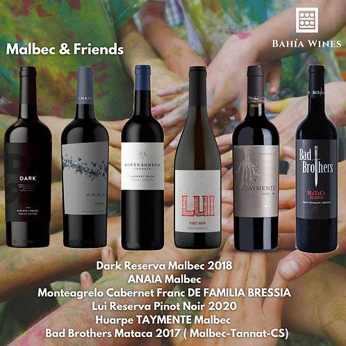 Box Malbec & Friends
