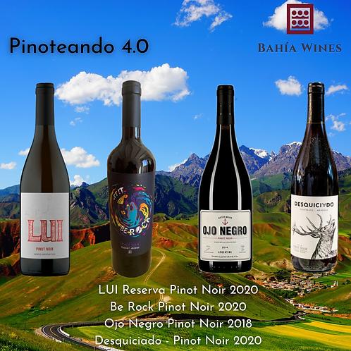 Box Pinoteando 4.0
