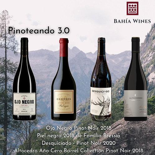 Box Pinoteando 3.0