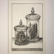 Specimen Jar III