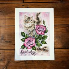 Breakwall Cats