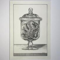 Specimen Jar II