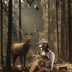 waxwing_edited_edited.jpg