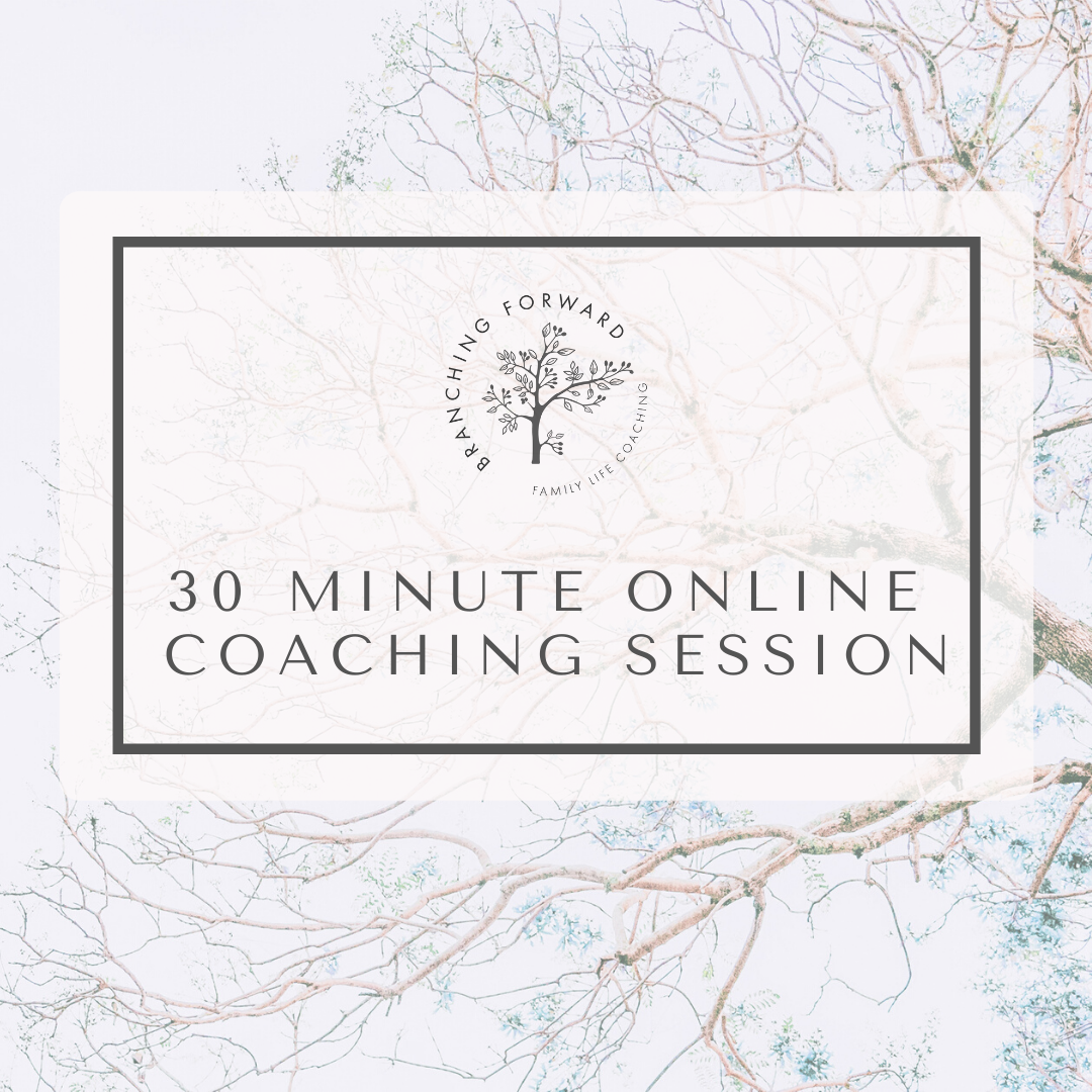 Online Coaching Session - 30 mins