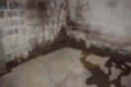 water-proofing-basement-standard1_7b1d08