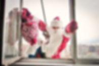 заказать Деда Мороза альпин домойста в окно