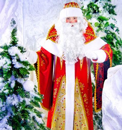 заказать Деда Мороза фокусника домой