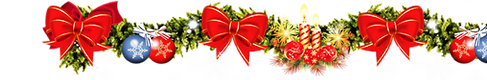 Заказать Деда Мороза и Снегурочку домой детям недорого Москва