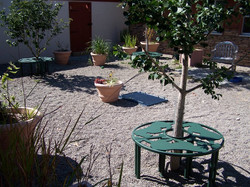 Decorative Garden Benches, Humane Society