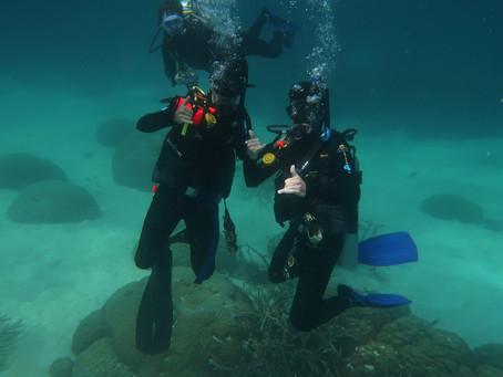 Cairns Dive Trip