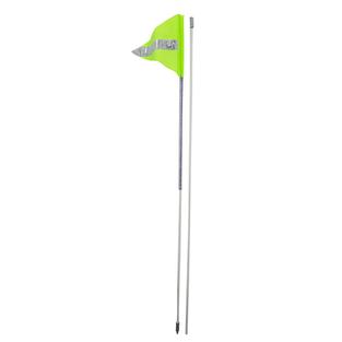 Buggy Whip Flag