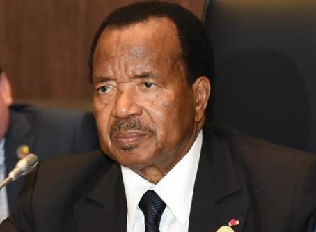 Camair-Co : Paul Biya ordonne la reprise de l'exploitation et recentre l'activité sur les...