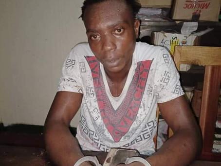 Cameroun: Un Jeune mis aux arrêts pour avoir insulté Paul Biya