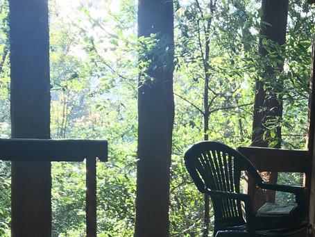 森の要所に室(むろ)をつくる&森林のケア
