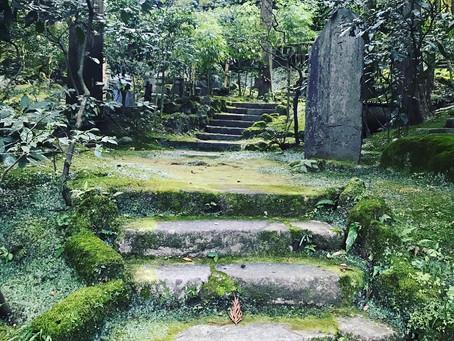 大地の再生と自然植生の庭