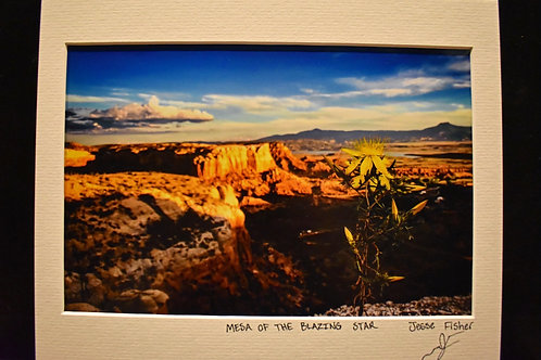 Mesa of the Blazing Star 8x10 Matted Print