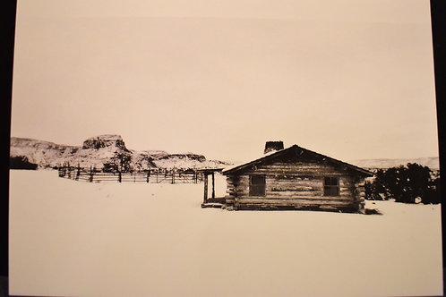 Snowy City Slickers 5x7 Postcard