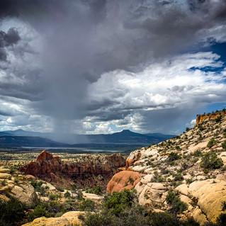 Mesa Monsoons
