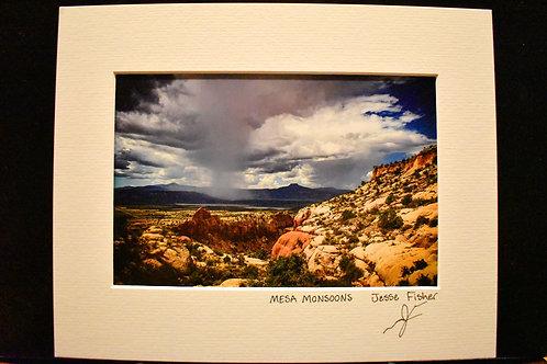 Mesa Monsoons 8x10 Matted Print