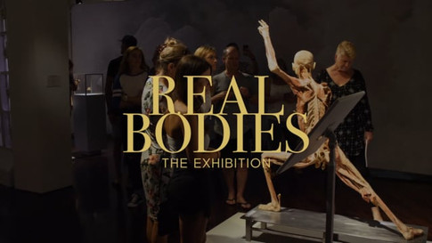 Real Bodies TVC