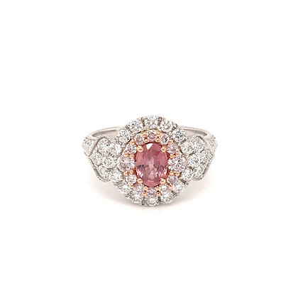 SDR54719-PAD-XX 14K TWO TONE PINK & WHITE GOLD RING