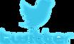twitter-logo-vector-png-twitter-logo-300