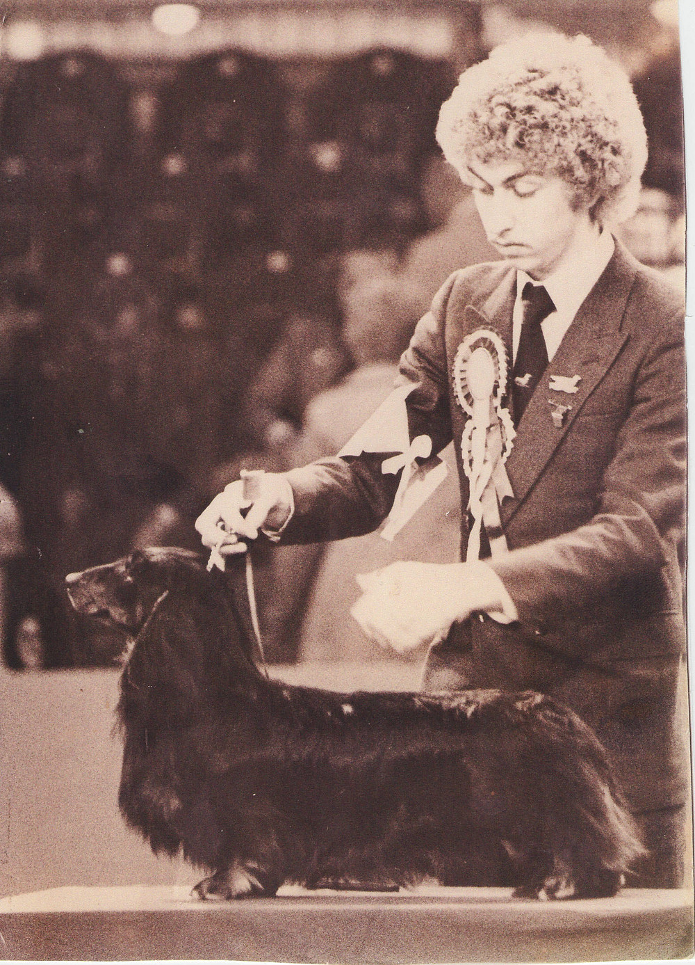 Johnson & Cross' Champion Africandawns Yank Go Home - Best of Breed Crufts 1981