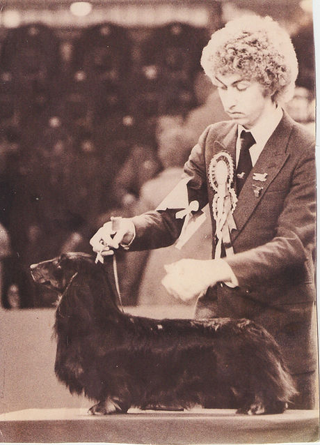 Crufts Hound Group 1981 with Ch Africandawns Yank Go Home