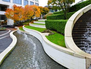 Property Management   Landscaping
