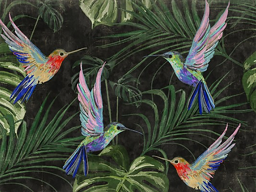 Evening Hummingbird