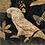 Thumbnail: White Parrots