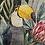 Thumbnail: Jungle Birds